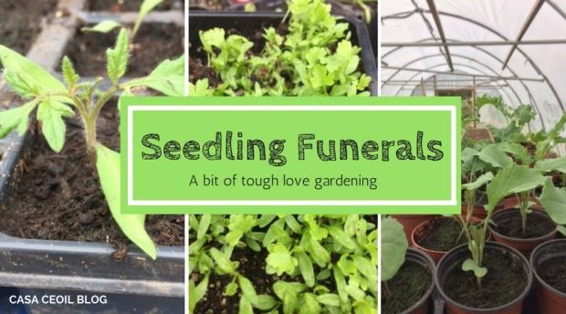 CC_Blog_Seedling_funerals_Apr17